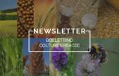 Bollettino Colture Erbacee n° 2/2021 del 29.01.21