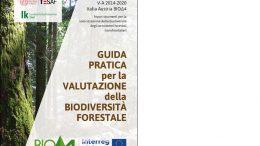 Guida pratica per la valutazione della biodiversità forestale