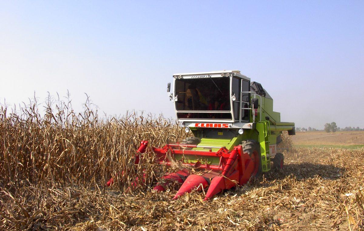 IMPATTO COVID SULL'AGROALIMENTARE VENETO 2020: IN CALO LE IMPRESE…