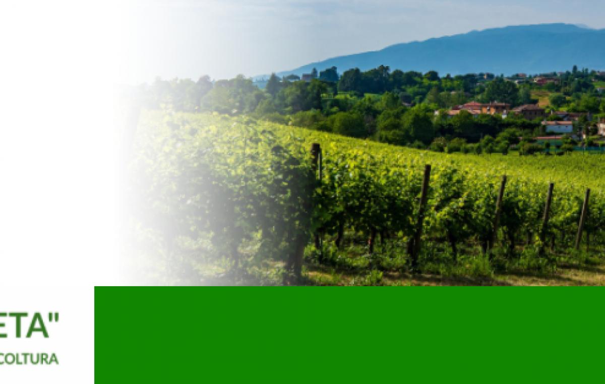 Agricoltura Veneta n. 02 del 20 gennaio 2021