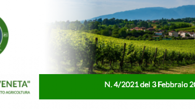 Agricoltura Veneta n. 4 del 03.02.2021