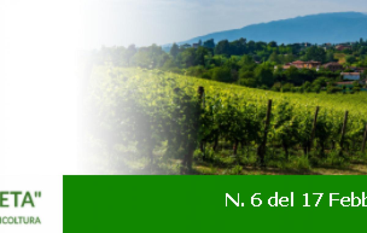 Newsletter Agricoltura Veneta n. 6 del 17 febbraio 2021