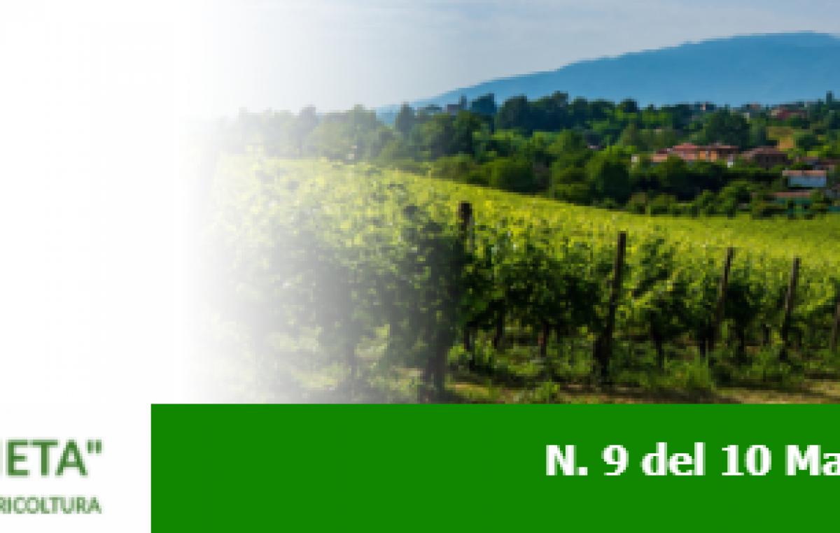 Newsletter Agricoltura Veneta n. 9 del 10 marzo 2021