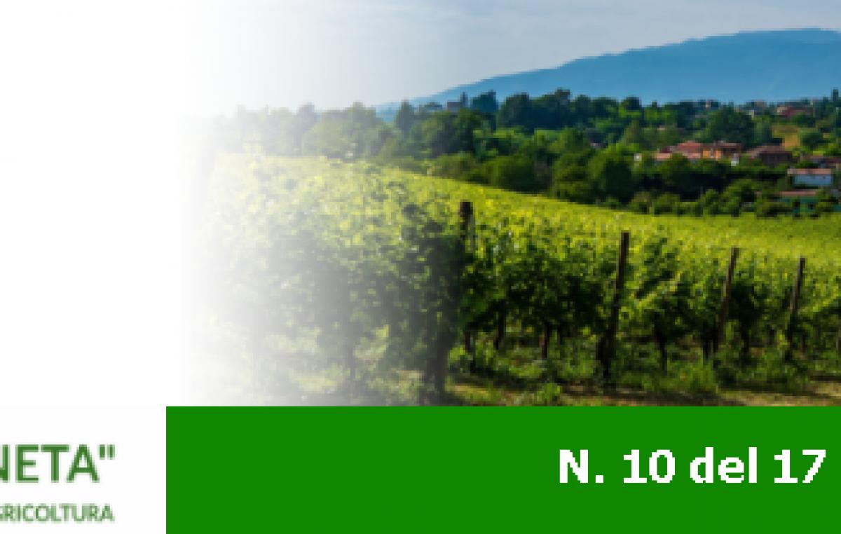 Newsletter Agricoltura Veneta n. 10 del 17 marzo 2021