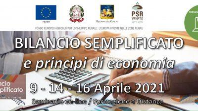 Bilancio semplificato e principi di economia