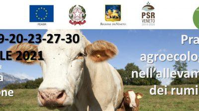 Pratiche agroecologiche nell'allevamento dei ruminanti