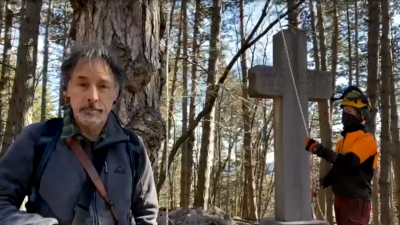 """""""TREE CLIMBING"""" SUL PINO SECOLARE A FERRARA DI MONTE BALDO (VR)"""