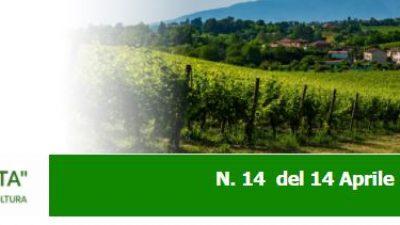 Agricoltura Veneta n. 14 del 14.04.2021