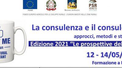 La consulenza e il consulente: approcci, metodi e strumenti (Edizione 2021: Le prospettive dell'AKIS)