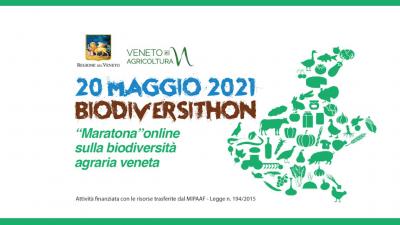 """""""BIODIVERSITHON 2021"""", LA GRANDE MARATONA VENETA PER LA SALVAGUARDIA DELLA BIODIVERSITÀ AGRARIA"""