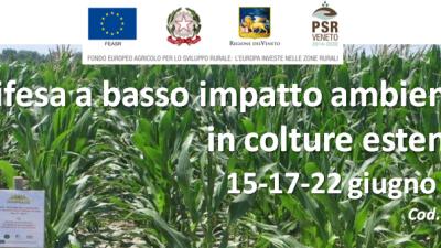 Difesa a basso impatto ambientale in colture estensive