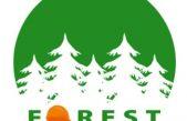 """OPERATORI FORESTALI ANCHE DONNE, STANDARDIZZARE LA FORMAZIONE: CI PENSA IL PROGETTO UE, """"FOREST"""""""