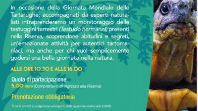 SANT'ANNA DI CHIOGGIA-VE: TARTOMANIA A BOSCO NORDIO
