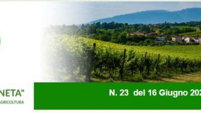 Agricoltura Veneta n. 23 del 16.6.2021