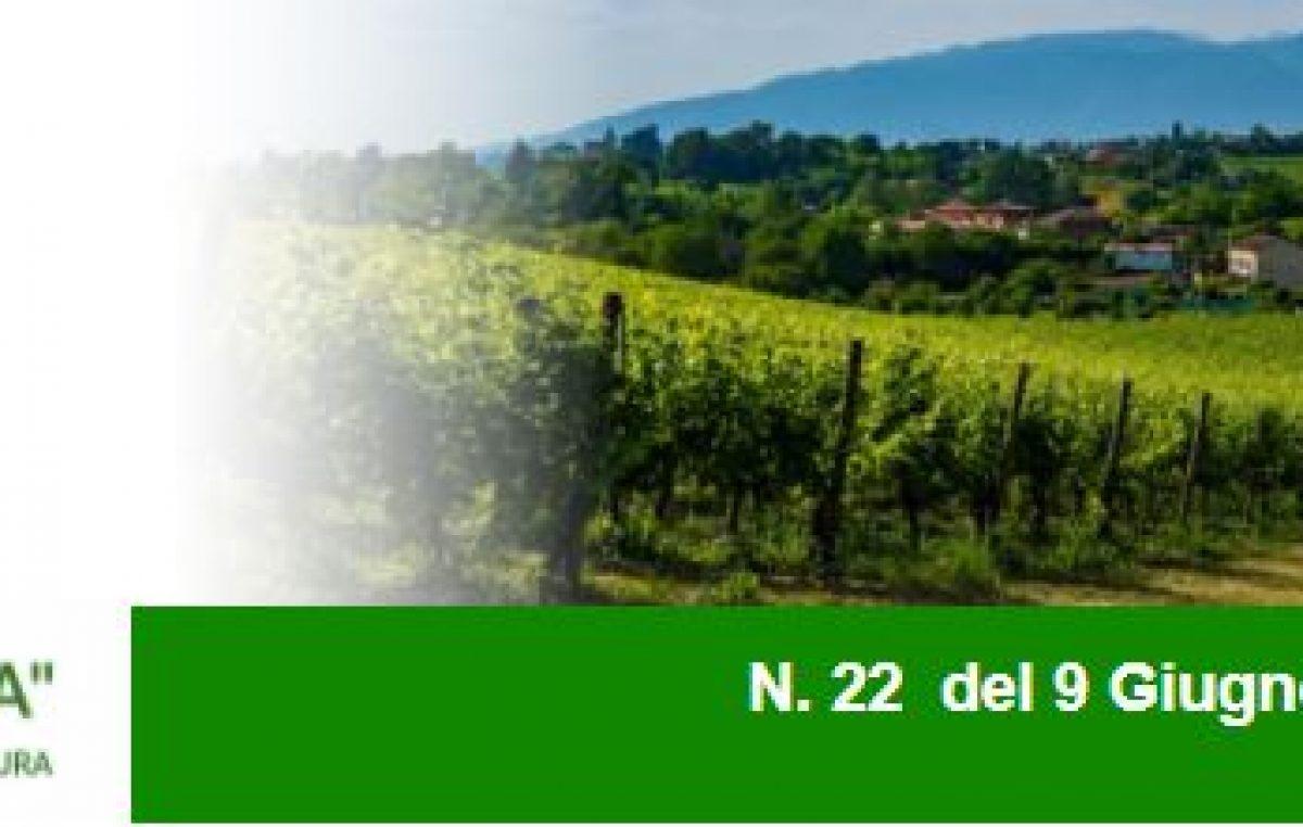 Agricoltura Veneta n. 22 del 09.06.2021