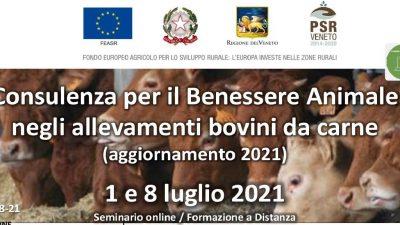 Consulenza per il Benessere Animale negli allevamenti bovini da carne (aggiornamento 2021)