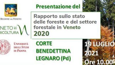 Presentazione Rapporto sullo stato delle Foreste del Veneto