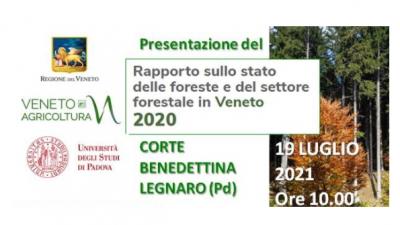 REGIONE E VENETO AGRICOLTURA PRESENTANO IL RAPPORTO 2020 SULLE FORESTE
