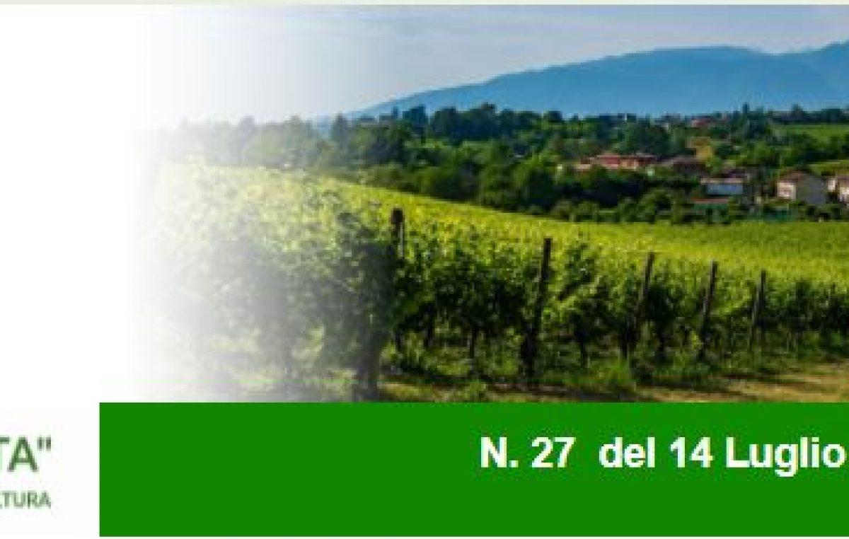 Agricoltura Veneta n. 27 del 14.7.2021