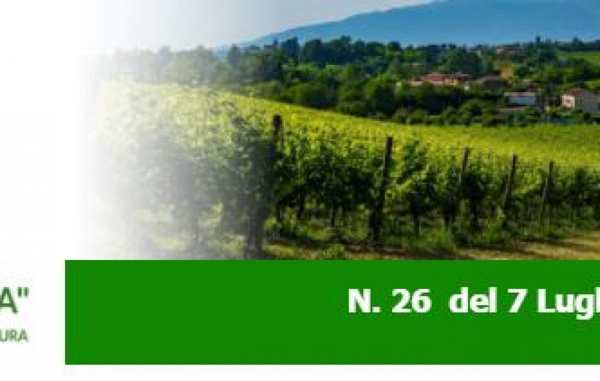 Agricoltura Veneta N. 26 del 8.7.2021