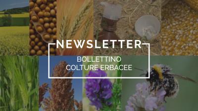 Bollettino Colture Erbacee n°40/2021 del 6.7.21 – SPECIALE IRRIGAZIONE DI PRECISIONE