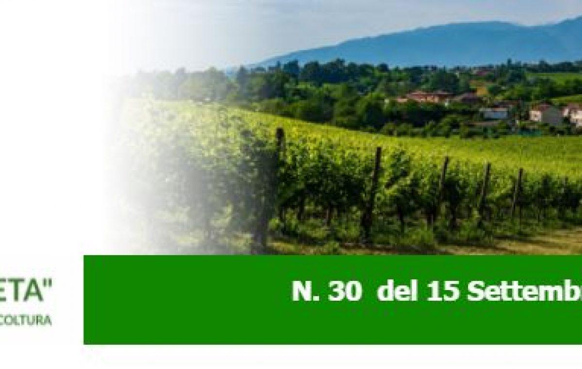 """NEWSLETTER """"AGRICOLTURA VENETA"""" N. 30 DEL 15.09.2021"""