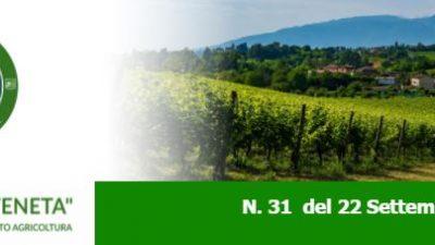 Newsletter Agricoltura Veneta n. 31 del 22.9.2021