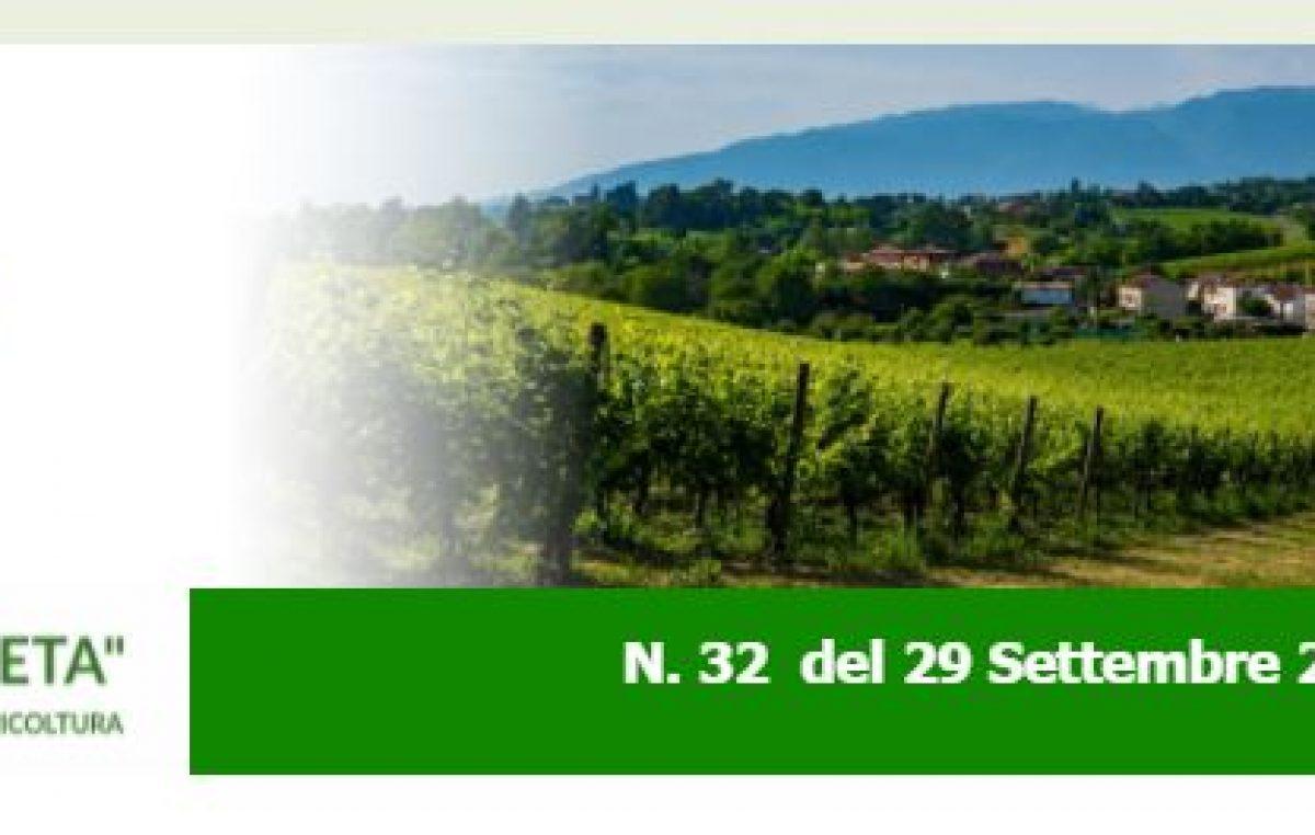 NEWSLETTER AGRICOLTURA VENETA N. 32 DEL 29.9.2021