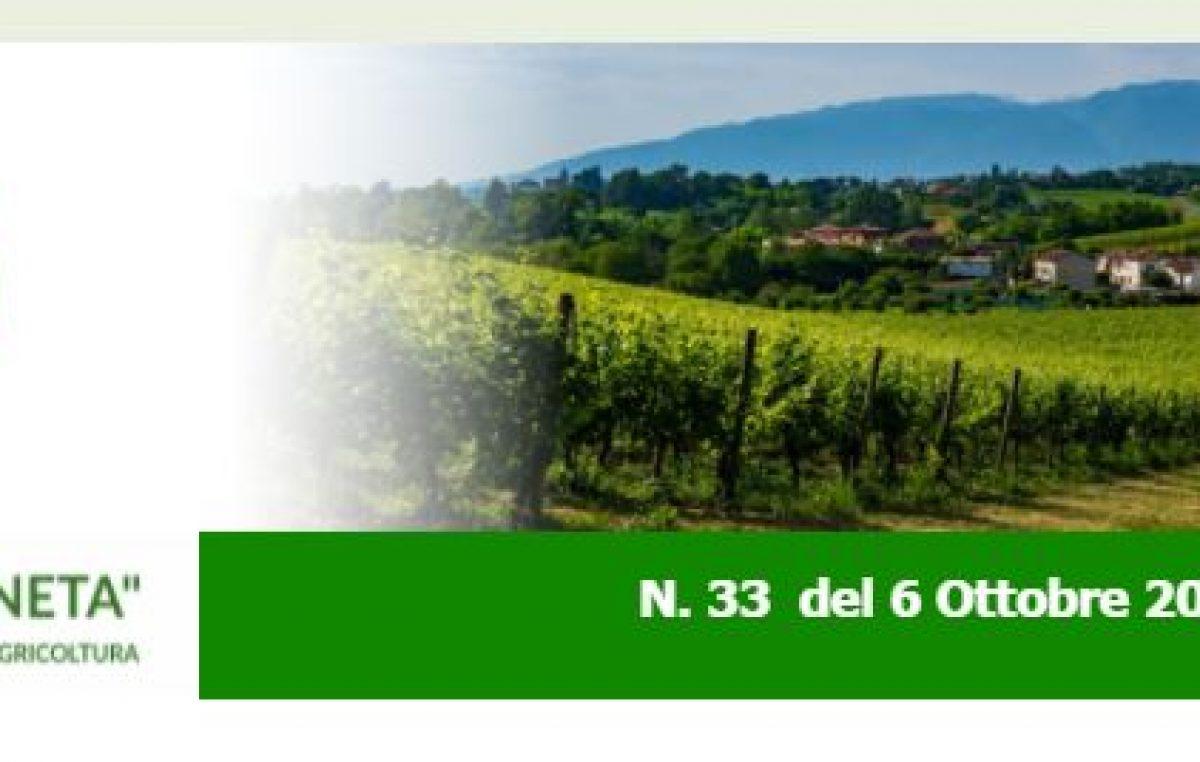 """NEWSLETTER """"AGRICOLTURA VENETA"""" N. 33 DEL 6.10.2021"""