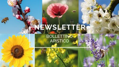 Bollettino Apistico n°11/2021 del 12.10.21